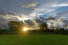 2017-10-08 17.43.36 (pang yu liu) Tags: 2017 10 oct travel sabah malaysia 十月 旅遊 沙巴 東馬 馬來西亞 flare sunny sunset dusk 日落 夕照 黃昏
