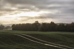 Spor i landskabet (Walter Johannesen) Tags: morgen solopgang landskab spor sonnenaufgang landschaft trail morning sunrise landscape