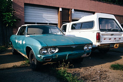 Every Inch Prestine (davelawrence8) Tags: car carparts autoportrait chevy chevrolet rusty michigan bangor 2016