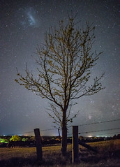 Alone together (nightscapades) Tags: astronomy astrophotography berry coolangatta coolangattamountain farm galacticcore milkyway mountain nature night nightscapes nowra rural science shoalhaven shoalhavenheads sky southcoastnsw stars