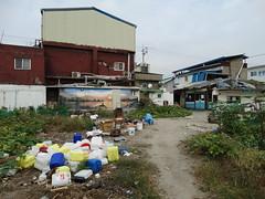 Daenung Mural Village (Miranda Ruiter) Tags: korea paju daenung muralvillage village streetphotography photography mural trash houses
