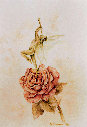 Faerie Rose -Watercolour