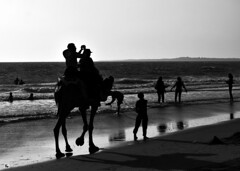 Camel Ride (Aniruddha1978) Tags: sun sky beach camel ride sand mono monochrome sunset people sea water sitting sit seated clicked india