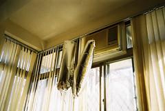 (埃德溫 ourutopia) Tags: film kodak colorplus kodakcolorplus200 kodak200 yashica t2 t3 t4 t5 filmphotography analog analogphotography balloon window room float silver sunshine light フィルム