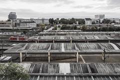 Brutal Morning (lars_uhlig) Tags: 2017 heidelberg germany deutschland hauptbahnhof central station bahnhof brutalism brutalismus concrete beton dächer roofs morning morgen train zug
