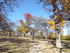 Minnehaha Park 171022_032 (jimcnb) Tags: 2017 oktober minnehaha minneapolis minnesota