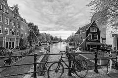 Amsterdam Canal (peterpj) Tags: amsterdamrembrandt silverefexprobw nikon d800 tokina 1618 bike fiets gracht sluis lock houses canal explored