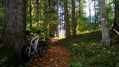 Heuberg, Nußdorf, Hallwang (twinni) Tags: mw1504 05102017 bike biketour mtb salzburg austria österreich flachgau heuberg herbst winterbike winterradl bergziege 20