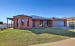13 Drings Way, Gol Gol NSW
