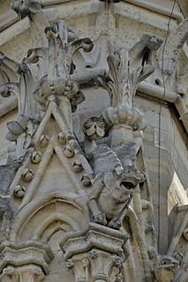 2017.07.14.073 PARIS - Notre-Dame, les gargouilles