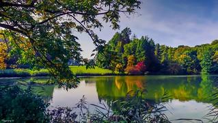 Le Lac de la Hulpe