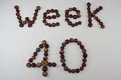 Week 40 Conkered! (40/52) (Stu.G) Tags: project52 project 52 project522017 522017 7oct17 7thoctober2017 7th october 2017 october2017 7thoctober 71017 7102017 canoneos40d canon eos 40d efs 24mm f28 stm canonefs24mmf28stm pancakelens canonpancake24mm england uk unitedkingdom united kingdom britain greatbritain d europe eosdeurope photographystudio photography studio photographyset photographysetsudio softbox conker conkers week40 week 40 horse chestnut trees horsechestnuttrees