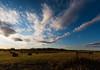 Evening Sun Over Hay Field 2 (Matt 23998) Tags: grass autumn sun country field fenceline vegreville clouds alberta bales sky farm rural fall sunset fence