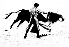 capeando a un Miura (aficion2012) Tags: arles feria du riz 2017 francia france corrida bull fight bullfight toro taureau toros matador torero toreador monochrome duotone bw miura capa capote ruben pinar capear capeando