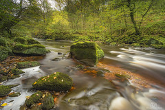 Autumn on the Lyne. (CamraMan.) Tags: shankwood longtown longexposure cumbria riverlyne rocks moss northcumbria trees autumn nature river canon6d canon1740mmlusm manfrotto lbracket ©davidliddle ©camraman outandabout water colours leepolariser ndgradfilters leelittlestopper leaves
