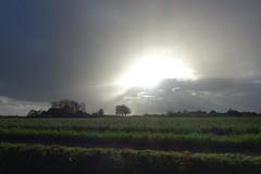 Herfst in Zeeuws Vlaanderen / Autumn (theo_vermeulen) Tags: waterlandkerkje zeeland zeeuwsvlaanderen shower autumn herfst weather landscape