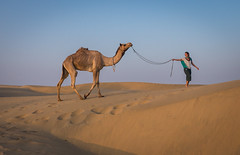 Rajasthan - Jaisalmer - Desert Safari with Camels-47-2