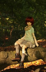Forest (MarloesK) Tags: autumn dollfie dream sister mmd ddh10 custom momo outside