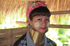 Kayan lady - Thailand (cattan2011) Tags: kayantribe thailand traveltuesday travelbloggers travelphotography travel streetpicture streetphoto streetart streetphotography ethics culture tribe lady portrait landscapeportrait 泰国 woman