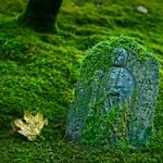Shrine in Japanese Garden 4451 C thumbnail