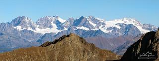 Group of Bernina