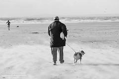 Rest Bay - Storm Brian (livin the dream*) Tags: welshbeaches wales cymru wfc welshflickrcymru welshcoast coastallife stormbrian sandstorm autumn sand sea surf rocks sunlight soulsurf