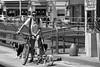 Paseador [Explored] (Letua) Tags: buenosaires amistad animal bicicleta bike calle city ciudad dog mascota metal perro persona pet portrait retrato robado urban urbana urbano