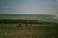 28300016 (annakimannakim) Tags: 35mm england uk seven sisters olympustrip35 olympus film