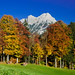 Autumn in the Mountains