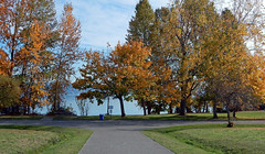 By the water at Magnuson Park (carpingdiem) Tags: seattle fall magnusonpark plane