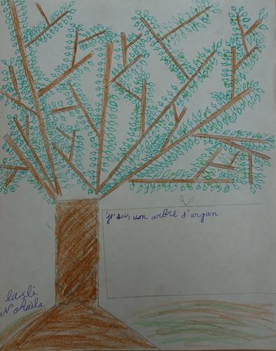 dessin de Nohaila sur l'argan