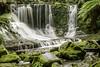 20120424-_DSC2806 (dibspix) Tags: 2012 holiday landscape mtfieldnationalpark rainforrest tasmania waterfall nationalpark australia au