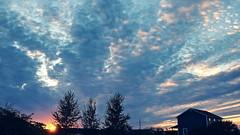 DSCF3349 (paul.wesson) Tags: atlanticcanada canada cloudporn clouds eastcoast explorecanada explorens fuji fujixt1 igcanada igersnovascotia imagesofnovascotia novascotia ohcanada sunset visitnovascotia yhz easternpassage ns