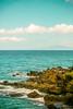 This Old Routine (Thomas Hawk) Tags: hawaii maui wailea beach fav10