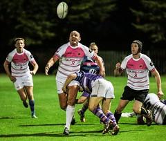 Doddie Weir Charity Match-99 (photosportsman) Tags: rugby edinburgh sport match fixture scotland male men man guinness gilbert graphics art poster outdoor event sru doddie weir charity south xv v crusaders weir'5 discretionary trust