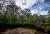 water wheel (primemundo) Tags: waterwheel abandoned landscape tomsriver nj newjersey