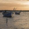 Le barche di Marceddì (nicolamarongiu) Tags: barche alba colore stagno marceddì sardegna saardinia canon capture