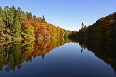 autumn reflection (t.horak) Tags: autumn colours reflection circle surface mirror průhonice landscape countryside park sunny