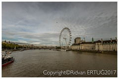 The London Eye and County Hall  from Westminster Bridge. (I'll catch up with you later, your comments and cr) Tags: londoneye county hall nikon1635mmf40 nikond610fx rertug