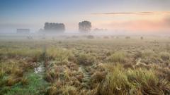 Burning mist