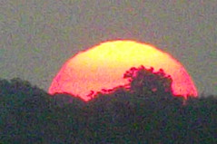 sunrise over East Dallas Texas 2nd day of Fall 2017 (28) (Learn, Love, Conserve) Tags: sunrise texas dallas sun