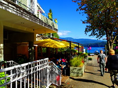 HFF! Nice day for a sidewalk lunch in the Cove (+3) (peggyhr) Tags: peggyhr restaurant umbrellas yellow autumn sunny warm fence railing hff dsc08587a deepcove northvancouver bc canada sonydschx80 shadows trees mountains cove groupecharliel1 niceasitgets~level1 thegalaxy thegalaxyhalloffame