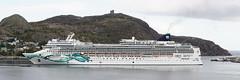 Norwegian Jade (wespfoto) Tags: norwegianjade newfoundland canada stjohns norwegiancruiseline ncl cruiseship wespfoto october signalhill