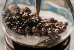 Pepper (Karol ...) Tags: pepper blackpepper fruit piperaceae seasoning dry dried tropical traditionalmedicine piperine pipernigrum textures dof focus blur food macro closeup stilllife