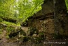 Destroyed bunkers at Wolf's Lair, Poland (Anna Calvert Photography) Tags: poland polska forest trees nature landscape wolf'slair hitlers lair nazi bunkers secondworldwar german gierloz ketrzyn