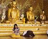 Las noticias sobre Buda (Nebelkuss) Tags: birmania myanmar yangon rangun shwedagon buda budismo budista buddhism buddhist golden dorado prayer oración fujixt1 fujinonxf1855 mingalaba asia