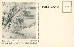 Indiana Dunes, circa 1970s - Chesterton, Indiana (Shook Photos) Tags: postcard postcards indianadunes sand dune dunes sanddunes beach shore shoreline lakemichigan chestertonindiana chesterton indiana portercounty