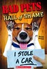 Bad Pets Hall of Shame (Vernon Barford School Library) Tags: allanzullo allan zullo pet pets animals shame shaming hallofshame funny humour humor humorous story stories anecdotes animalbehaviour animalbehavior behavior behaviour vernon barford library libraries new recent book books read reading reads junior high middle school vernonbarford nonfiction paperback paperbacks softcover softcovers covers cover bookcover bookcovers 9781338186581