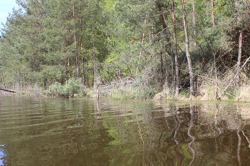 2015-05-10-09-17-49_Les Forts Trotters_à l'étang de Hanau