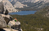Best View, Yosemite National Park (Basak Prince Photography) Tags: findyourpark nature olmsteadpoint peaks summer tenayalake tiogapass yosemitenationalpark